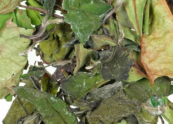 Bio Pai Mu Tan - Weißer Tee