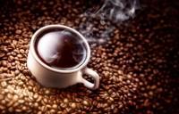 Turquino Arabica Kaffee 1000g in Bohnen