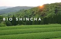 Kabuse Bio Shincha Classic Ernte 2020 - 200g - Keiko Tee