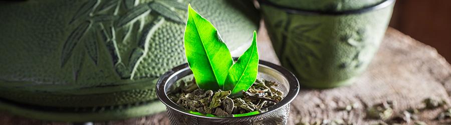 Banner-Image Grüner Tee aus Japan