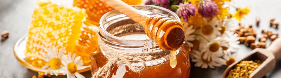 Banner-Image Honig Spezialitäten