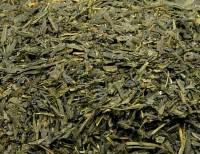 Japan Sencha Ogasa Grüner Tee