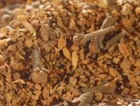 Bio Yarishi Ashwinis Original Gewürzmischung - für einen natürlichen Chai
