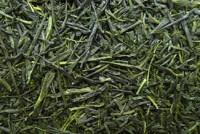 Japan Sencha MIYAZAKI - Grüner Tee