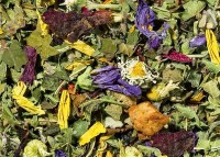 Basentee Wohlfühlkräuter - Naturbelassene Kräuterteemischung