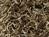 Bio Weißer Tee White Cui Min Spring Qingshan