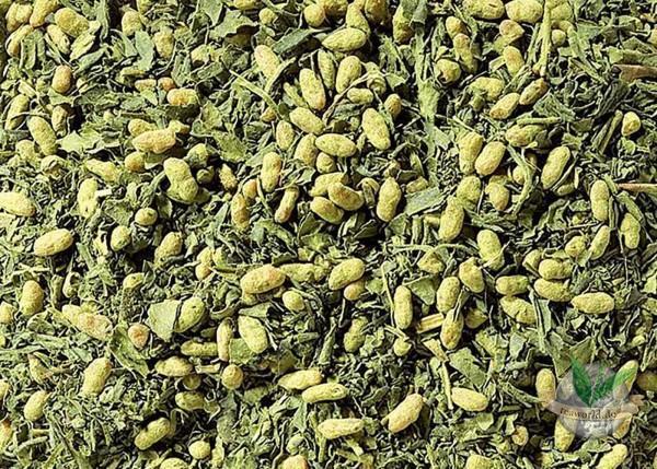 Japan Matcha Genmaicha Grüner Tee
