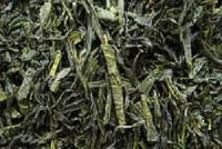 Gabalong aus Japan Grüner Tee