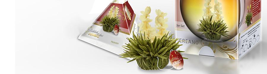Banner-Image Teerosen, Blooming- Erblüh Tee