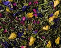 Weißer Tee Macabeo mit Zitrus-Jasmin-Note